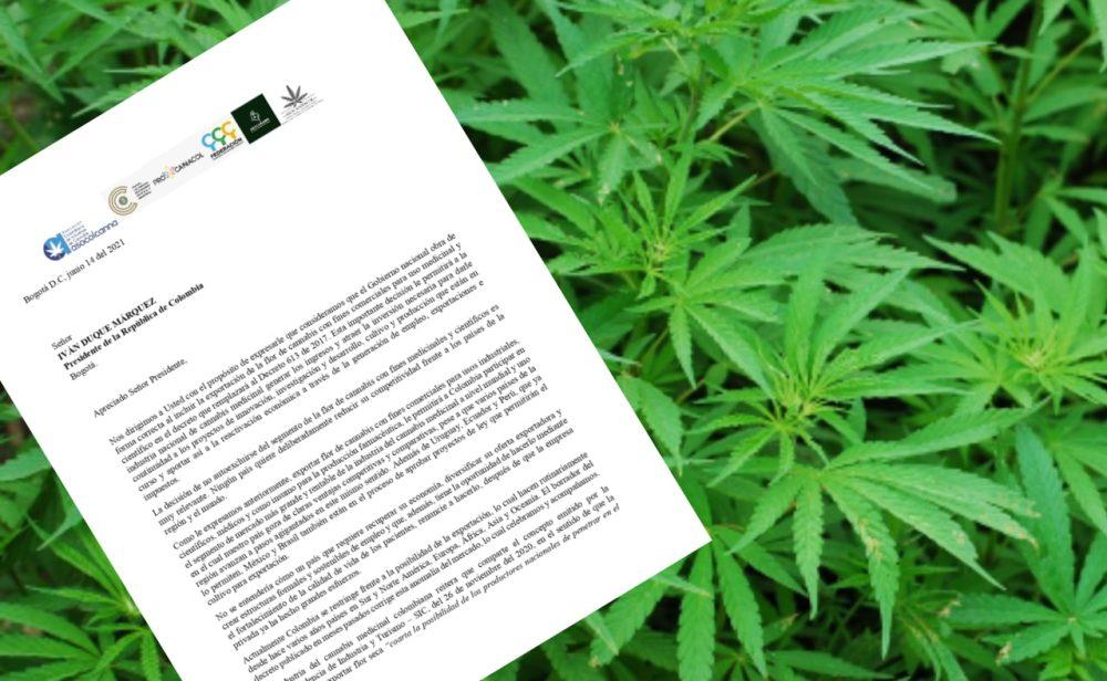 Empresarios le piden al gobierno destrabar las exportaciones de cannabis y salvarlos