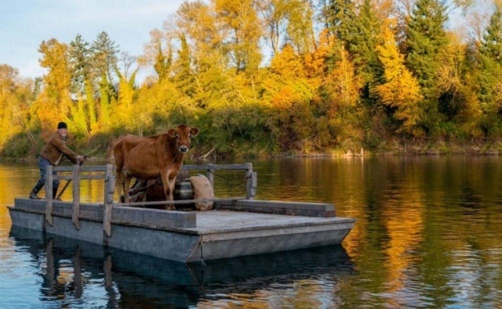First Cow: un cine clarividente