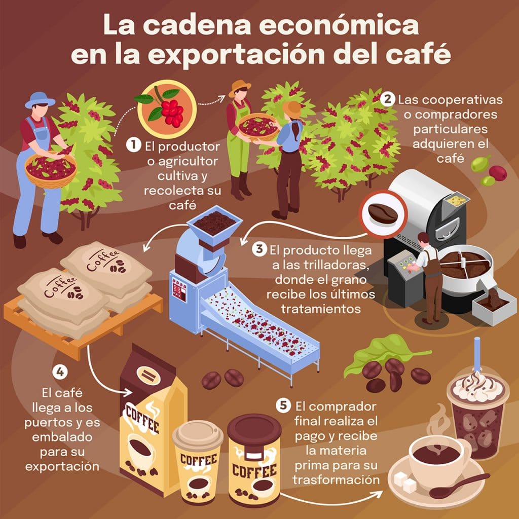 La cadena de exportación del café colombiano