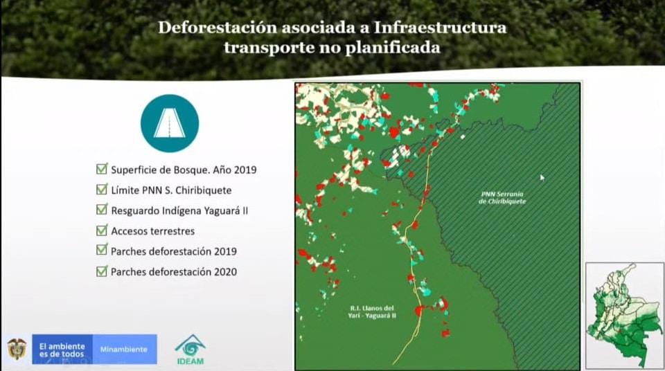 Deforestación por construcción de vías ilegales - Ministerio de Ambiente