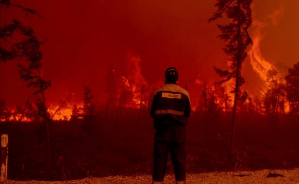 No, la pandemia no detuvo el impacto del cambio climático